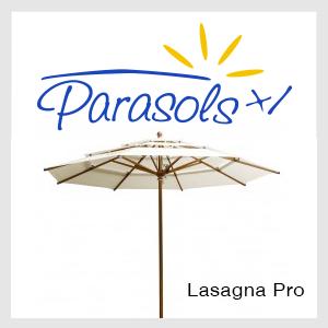 Lasagna Pro